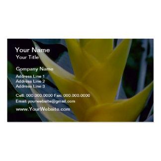 Heliconia amarillo spp. flores plantillas de tarjeta de negocio