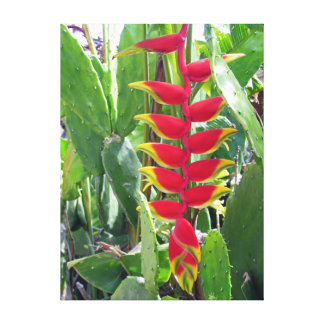 Heliconia and Cacti Canvas Print