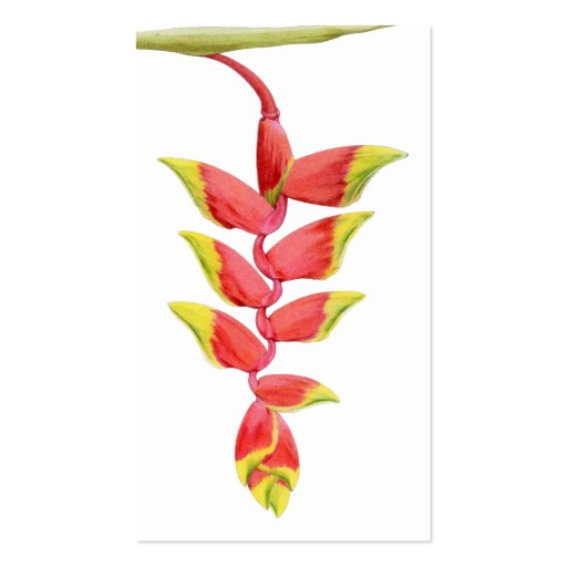 Heliconia Branch Profile Card Business Cards