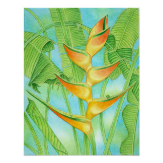 Heliconia hawaiano póster