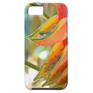 heliconia Hawai'i iPhone 5 Carcasas