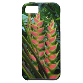 Heliconia iPhone 5 Carcasas