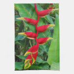 Heliconia Kitchen Towel