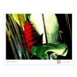 Heliconia No. 1 Postcard