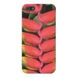 Heliconias I iPhone 5 Carcasa