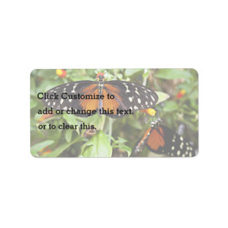 Heliconius Butterfly Address Label