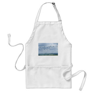 Helicopter flypast adult apron