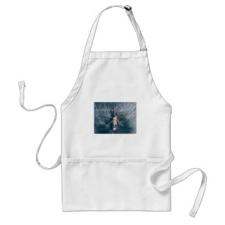 helicopter over water aprons