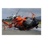 Helicóptero del delfín MH-65 estrellado en Arcata Póster