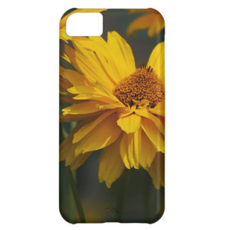 Heliopsis Case For iPhone 5C