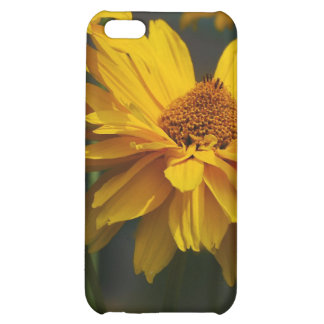 Heliopsis iPhone Case Cover For iPhone 5C