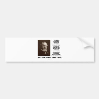 Hell To Be Endured Hereafter William James Quote Bumper Sticker