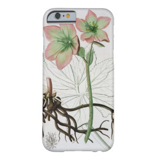 Helleborus Niger from 'Phytographie Medicale' by J Barely There iPhone 6 Case
