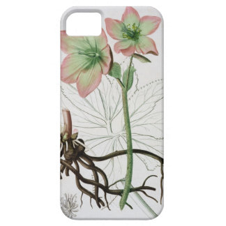 Helleborus Niger from 'Phytographie Medicale' by J iPhone SE/5/5s Case