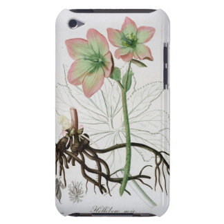 Helleborus Niger from 'Phytographie Medicale' by J iPod Touch Case