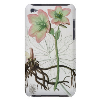 Helleborus Niger from 'Phytographie Medicale' by J iPod Touch Case-Mate Case