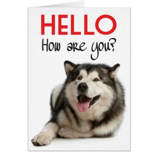 Hello Alaskan Malamute Puppy Dog Greeting Card