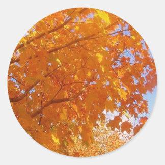 Hello Autumn Classic Round Sticker