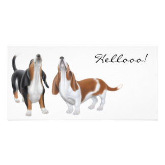 Hello Bassett Hound Photo Cards