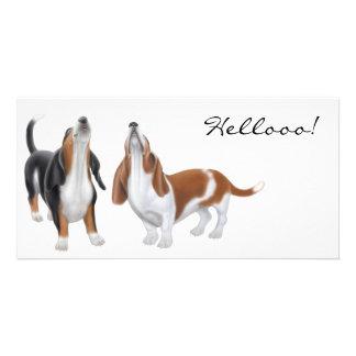 Hello Bassett Hound Photo Cards