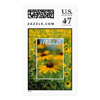 Hello - Black-Eyed Susans Postage Stamp