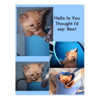 Hello= BOO card