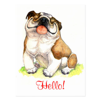 Hello Bulldog Puppy  Dog Greeting Postcard