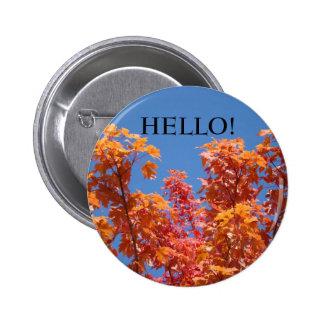 HELLO! buttons Blue Sky Orange Fall Tree Leaves