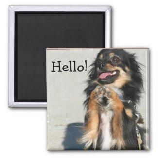Hello Chihuahua magnet