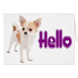 Hello Chihuahua Puppy Dog Blank Notecard Stationery Note Card