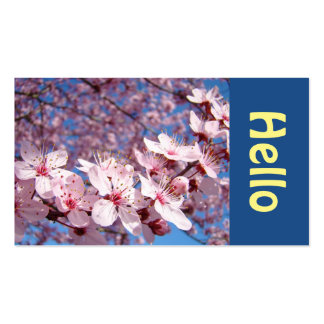 HELLO Colorful Business Cards Spring Blossoms
