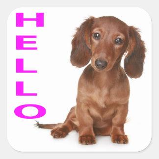 Hello Dachshund Puppy Dog Sticker / Label
