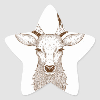 Hello Deer Star Sticker