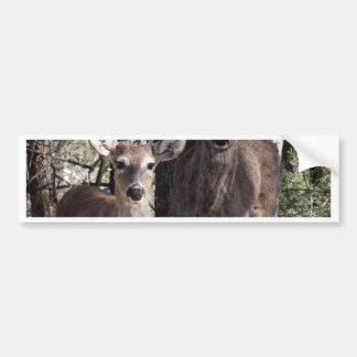Hello Deery Bumper Sticker