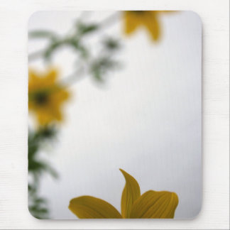 Hello - Floral Photography Mouse Pad