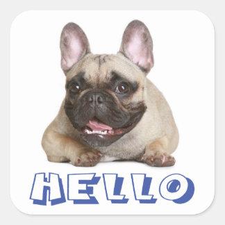 Hello French Bulldog Puppy Dog  Sticker Seal Square Sticker