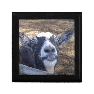 Hello Friendly Goat Jewelry Box