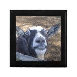Hello Friendly Goat Keepsake Box