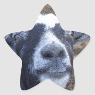 Hello Friendly Goat Star Sticker