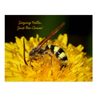 Hello From Bee On Yellow Dandelion Flower Postcard