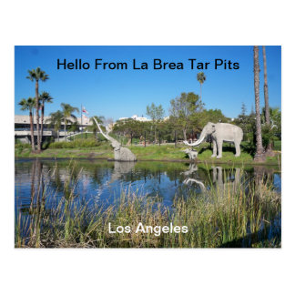 Hello From La Brea Tar Pits  Postcard