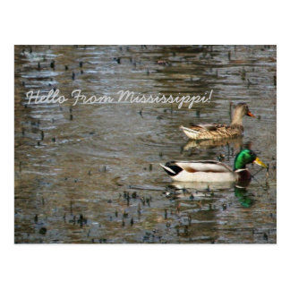 Hello From Mississippi! Post Card
