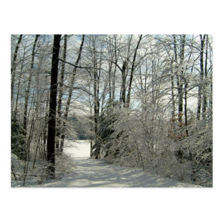Hello From Pa-Winter Trail Design Post Cards