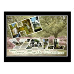 Hello From South Carolina Vintage Travel Postcard Post Cards