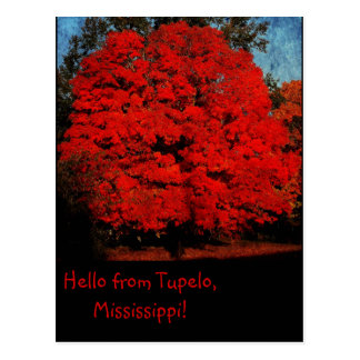 Hello From Tupelo Mississippi Post Cards