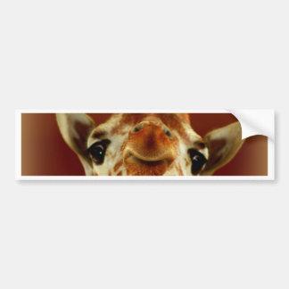 Hello Giraffe Bumper Sticker