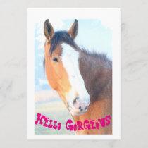 Hello Gorgeous Horse Birthday Cards