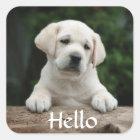 Hello / Hi  Labrador Retriever Puppy Dog Stickers