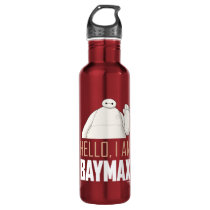 Hello, I am Baymax Stainless Steel Water Bottle