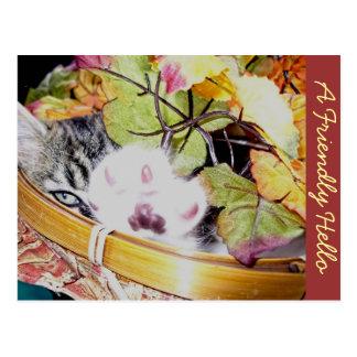 Hello Kitty Cat Kitten, Paw Up, Fall Leaves Basket Postcard